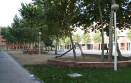 L'Ajuntament poda els plataners de la plaça de la Sardana