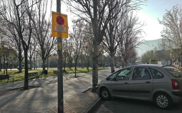 A partir de dilluns es talaran nou pollancres del carrer de l'Estació en mal estat
