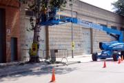 L'Ajuntament tala tres pollancres malalts del carrer de l'Estació