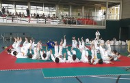 Uns 220 infants participen a la trobada de Joves Judokes de la Llagosta