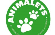 Animalets celebra diumenge la 1a Jornada de Portes Obertes