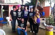 Animalets obre les portes del refugi i recapta uns 250 euros