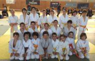 Pluja de medalles del Club Judo-Karate la Llagosta a la Copa de Catalunya de judo benjamí i aleví