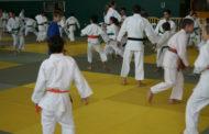 El CEM El Turó acollirà dissabte el Campionat de Catalunya de judo infantil i cadet