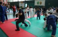 Diumenge, es va celebrar la desena Trobada de Joves Judokes