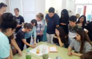 L'Institut Marina organitza una exposició de ciències en el marc del programa Erasmus Plus