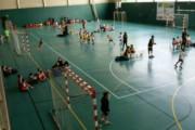 La Llagosta tornarà a ser l'escenari de la Trobada comarcal de minihandbol