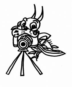 El veredicte i el lliurament de premis del 18è Concurs Estatal de Fotografia es farà demà dissabte