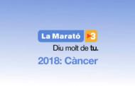 L'Escola d'Adults se suma demà dijous a la Marató de TV3 amb una xerrada sobre el càncer