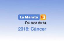 L'Escola d'Adults se suma avui a la Marató de TV3 amb una xerrada sobre el càncer