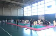 Més de 200 infants participen al Trofeu de Nadal de judo de la Llagosta