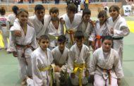 Pluja de podis del judo llagostenc a la Copa Catalunya benjamí i aleví