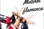 La Casa de Andalucía organitzarà diumenge una matinal flamenca