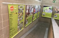 Can Pelegrí acull una exposició sobre el programa Voluntariat per la Llengua