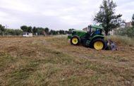 L'Ajuntament fa treballs de manteniment a Can Xiquet i al viver