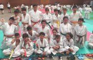 L'AE Karate-Judo tanca la temporada competitiva amb una pluja de medalles al Torneig Bushido de Barcelona