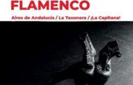 El Centre Cultural acollirà dissabte el festival d'Aires de Andalucía