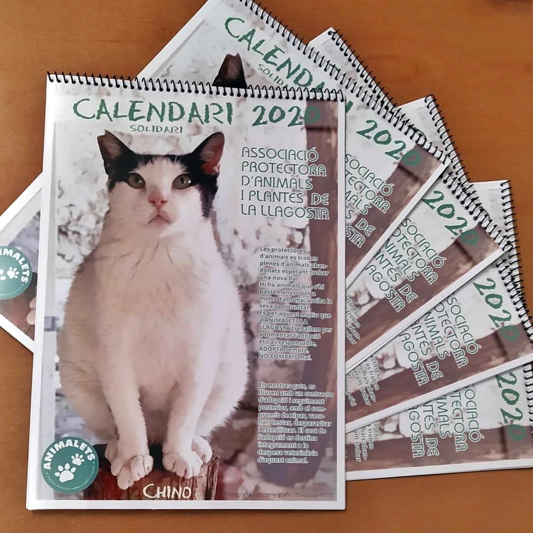 Animalets posa a la venda el seu calendari solidari