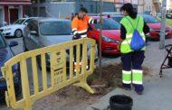 L'Ajuntament planta arbres d'espècies autòctones al carrer de l'Estació
