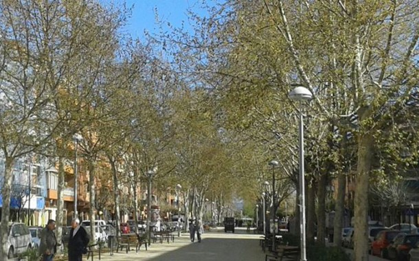 La poda especial dels arbres del passeig de l'avinguda de l'11 de Setembre comença demà