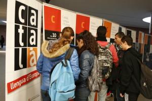 Inauguració exposició català (3)