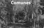 Avui es presenta a la Biblioteca de la Llagosta la novel·la La muerte de los comunes
