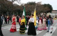 La celebració del Dia d'Andalusia va reunir ahir un bon nombre de persones al Centre Cultural