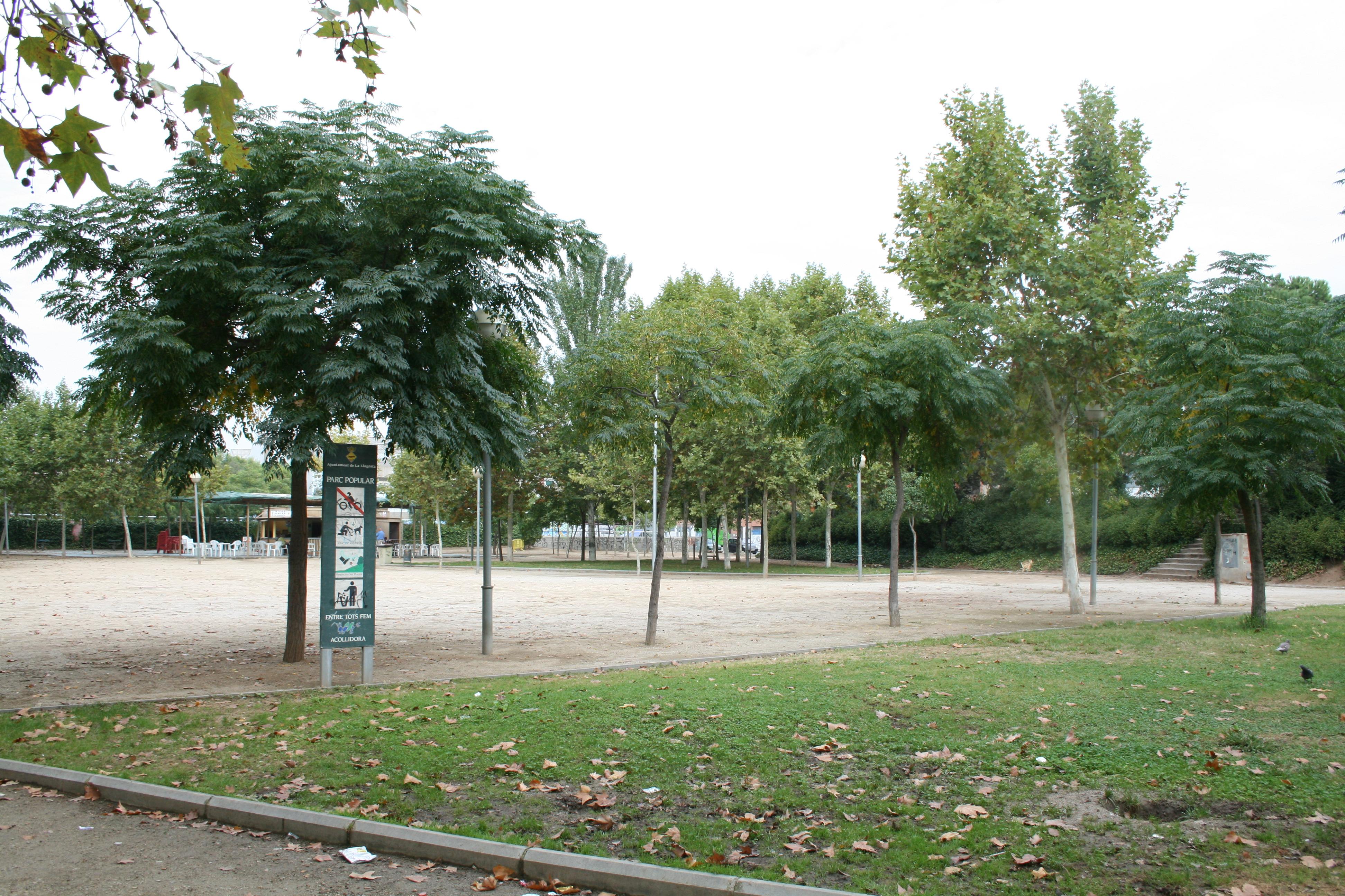 Tractament fitosanitari dels arbres del municipi