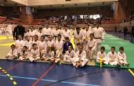 L'AE Karate-Judo participa en una trobada del Judoxics