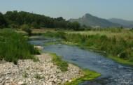 El Consorci del Besòs desmenteix que el riu estigui contaminat